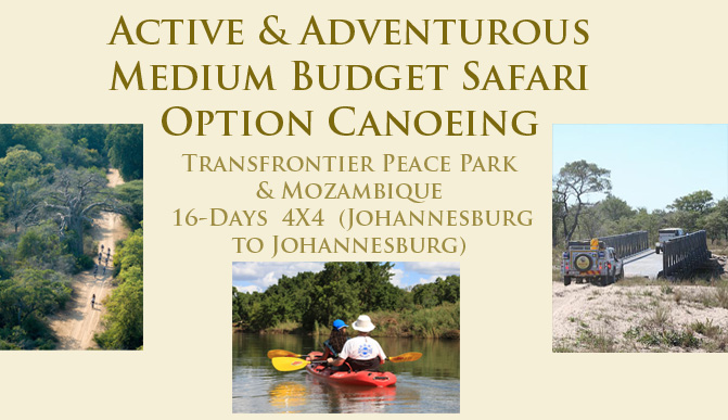 Active and Adventurous Tours in the Kruger National Park and